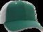 C16NTM-522W Emerald/White